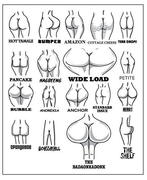 types_of_womens_behinds