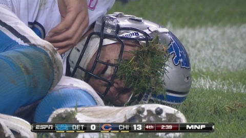 matt-stafford-eats-grass